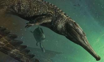В африканській пустелі виявлені останки найбільшого морського крокодила