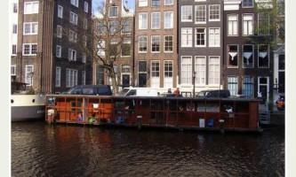 В амстердамі працює плавучий притулок для кішок