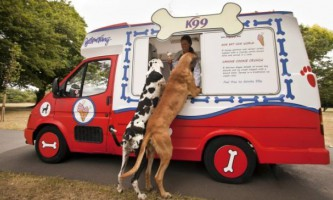 У британських парках почнуть продавати морозиво для собак