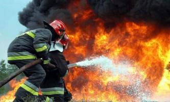 В іркутську згоріли десятки тварин