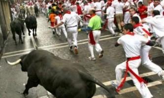 В іспанії бик убив чоловіка під час забігу