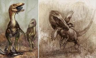 В китаї знайдені динозаври із залишками останнього обіду