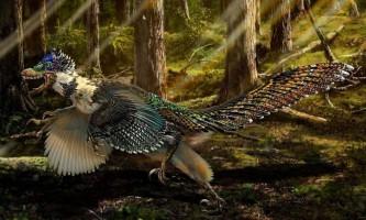 В китаї знайдені останки динозавра, що жив на планеті 125 мільйонів років тому