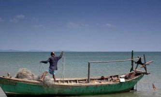 У новій зеландії рибалки переслідувала гігантська акула