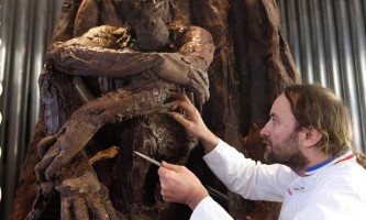 У париже з`явився шоколадний ліс з фільму `планета мавп`