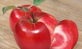 У швейцарії схрестили яблуко з помідором