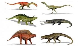 В сша виявлений один з найдавніших предків крокодила