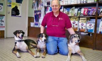 В сша ветеринар двічі клонував свою собаку, витративши $ 100000