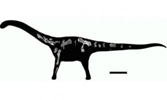У танзанії виявлений ще один титанозавр