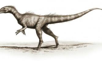 В уельсі виявлено останки найдавнішого динозавра-злодія юрського періоду