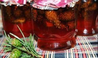 Варення з соснових шишок, рецепт, і його користь