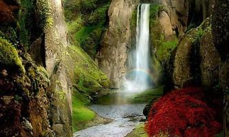Величні творіння природи