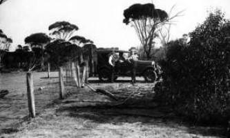Великі австралійські паркани