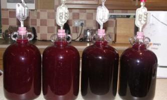 Вино з сливи в домашніх умовах рецепт
