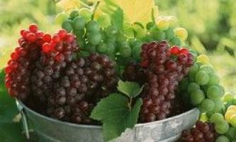 Виноград відео