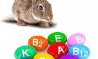 Вітаміни та мінеральні добавки для кроликів: необхідна дозування, опис