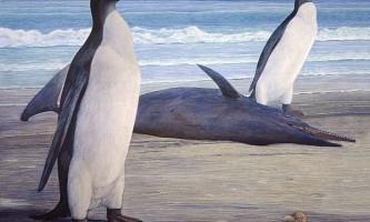 Відновлено вигляд незвичайного вимерлого пінгвіна