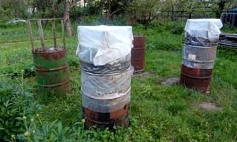 Вирощування огірків в бочці