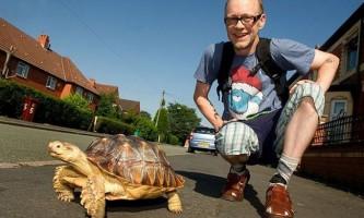 Дбайливий чоловік щодня і в будь-яку погоду вигулює свою черепаху