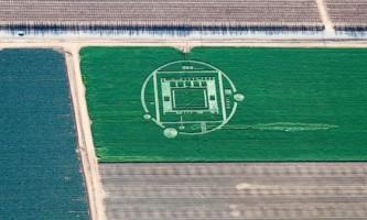 Загадкові кола на поле в каліфорнії знову підняли тему нло