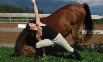 Жінка привчила свого коня займатися йогою
