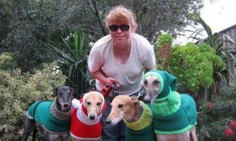 Жінка пошила 300 речей, щоб допомогти тваринам пережити зиму
