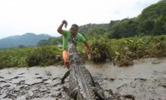 Житель коста-рики грає з диким крокодилом як з собакою