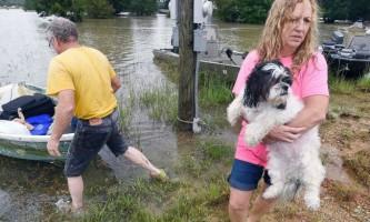 Жителі луїзіани рятують тварин від повені