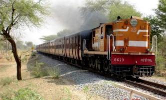Тварина могло стати причиною сходу з рейок поїзда в індії