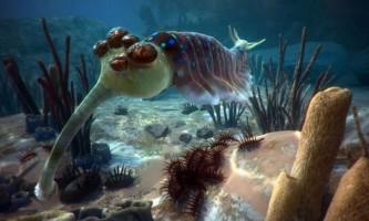Тварини докембрію і кембрійського періоду