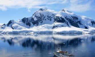 Тваринний світ антарктики