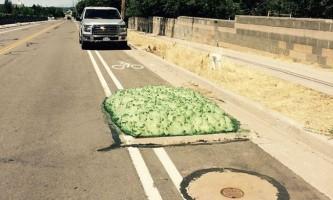 Страшна зелена слиз вилізла з каналізації в сша