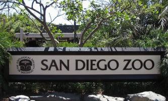 Зоопарк сан-дієго