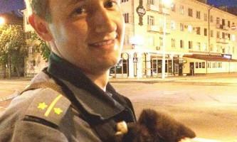 Зоозахисники з білорусі врятували застряглого в вуличному ліхтарі кошеня